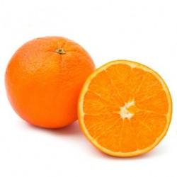 Oranges Blondes BIO (au kg)