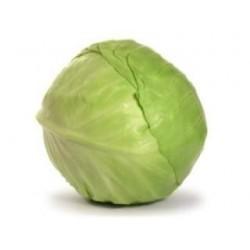 Chou vert lisse  BIO  à la pièce payé au kilo
