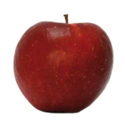 Pommes Dalinette  Bio au Kg