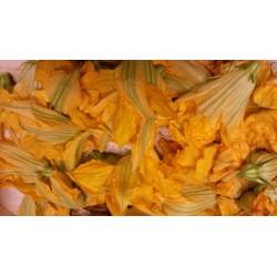 Fleurs de courgette Mandelieu BIO (barquette de 10-12 fleurs)