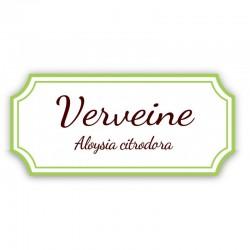 Verveine de la Drôme - Bio Sachet 20g Tisane La Dauphin