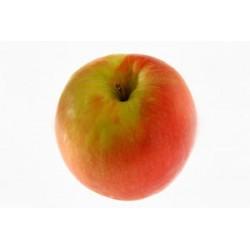 Pommes Pink Agriculture raisonnée (au kg)