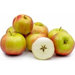 Pommes Idared Agriculture sans résidus calibre 150 170 G (au kg)