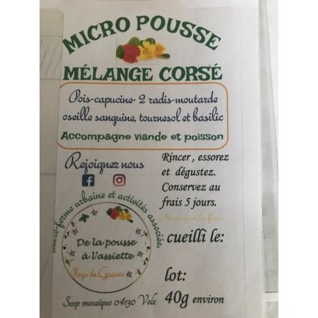 """Mélange """" corsé """" Micro Pousses 40 g (la barquette)"""