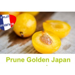 Prunes Golden Vaucluse conversion au kg