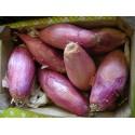 Oignons Simiane BIO (au 500g)