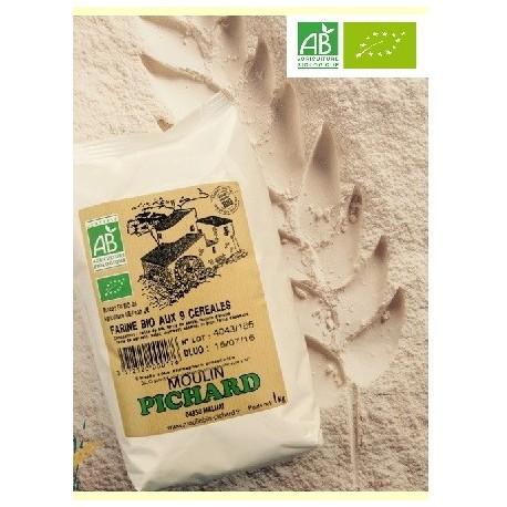 Farine de farine aux 9 céréales