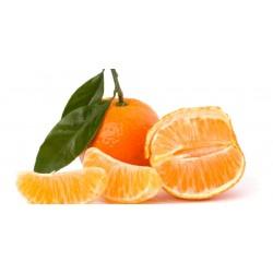 Mandarines d'Italie BIO (au Kg)