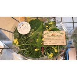 Mélange  roquette brocoli et moutarde douce 25 30 g moyenne barquette