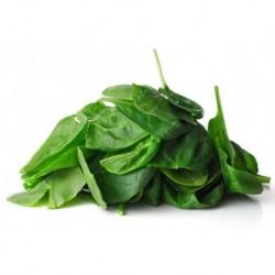 Pousses d'épinards salade  BIO à l'hectogramme (100g)