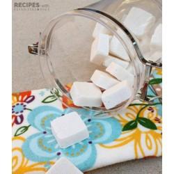 Mutyne -- Tablettes Vaisselle Ecocert Tout en Un