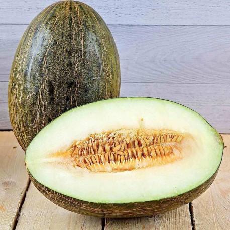 Melon vert Bio du var (à la pièce payé au kg)