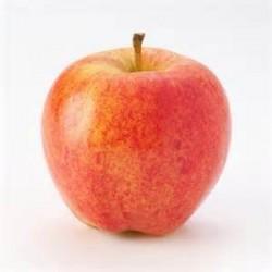 Pommes GALA  Bio de France Naturdis (au Kg)