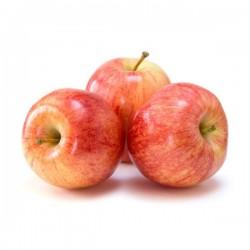 Pommes Gala Bio cal 150 180 au kg
