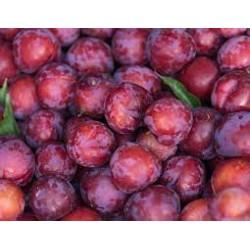 Prune rouge bio d'Italie (au 500g)