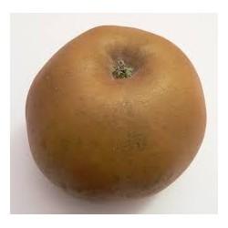Pommes Reinette grise BIO au Kg