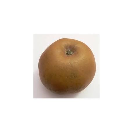 Pomme Reinette BIO au Kg