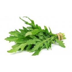 Salade Roquette par 100 g