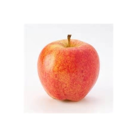 Pommes Gala (au kg)